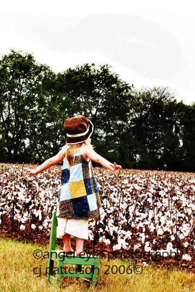 Cotton13